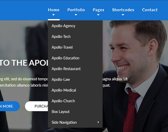 DropDown Menu Apollo Dnn/Dotnetnuke theme / skin