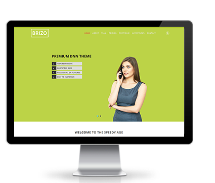 Wide & boxed Layout Brizo Dnn/Dotnetnuke theme / skin