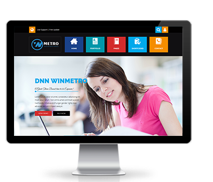 Wide & boxed Layout WinMetro Dnn/Dotnetnuke theme / skin